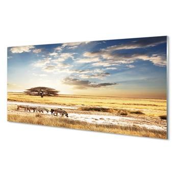 Obrazy akrylowe Zebry chmury drzewo
