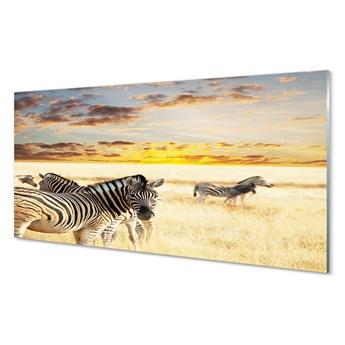 Obrazy akrylowe Zebry pole zachód słońca