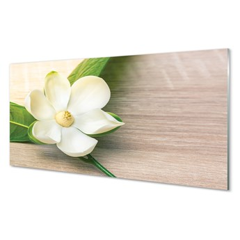 Obrazy akrylowe Biała magnolia