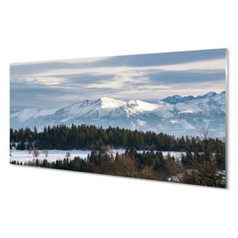 Obrazy akrylowe Góry zima śnieg