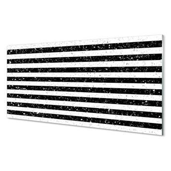 Obrazy akrylowe Plamy paski zebra