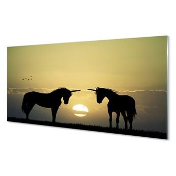 Obrazy akrylowe Pole zachód słońca jednorożce