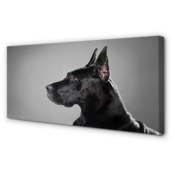 Obraz na płótnie Czarny pies