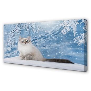 Obraz na płótnie Kot zimą
