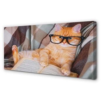Obraz na płótnie Czytający kot