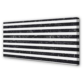 Obraz na płótnie Paski zebra plamy