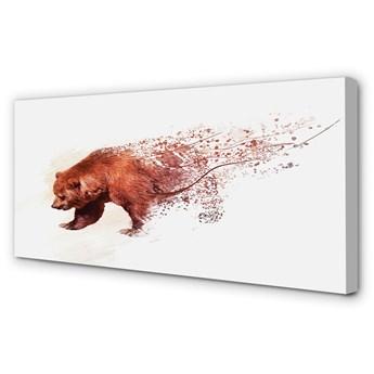 Obraz na płótnie Niedźwiedź
