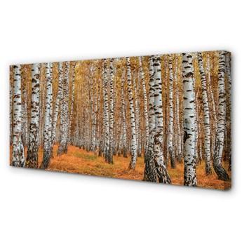 Obraz na płótnie Jesień drzewa