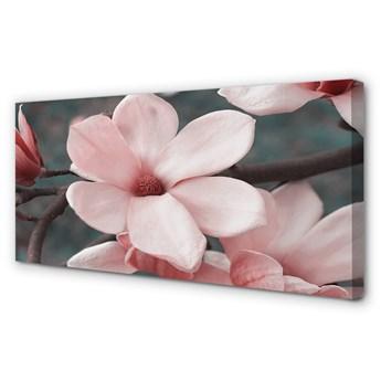 Obrazy na płótnie Różowe kwiaty