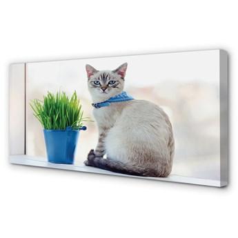 Obraz na płótnie Siedzący kot
