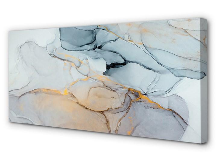 Obrazy na płótnie Kamień abstrakcja plamy Pomieszczenie Salon
