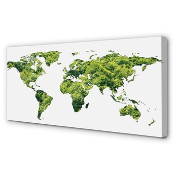 Obraz na płótnie Mapa zielona trawa