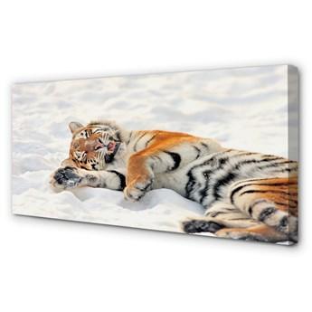 Obraz na płótnie Tygrys zima śnieg
