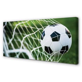 Obrazy na płótnie Bramka piłka