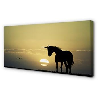 Obrazy na płótnie Pole zachód słońca jednorożec