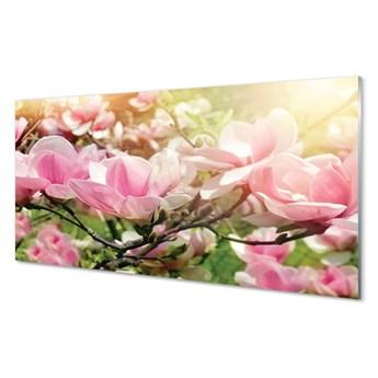 Obrazy na szkle Kwiaty