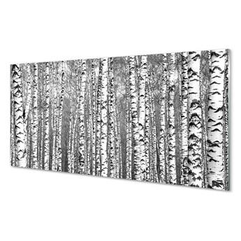 Obrazy na szkle Czarno-białe drzewa