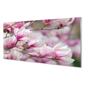Obraz na szkle Kwiaty drzewa
