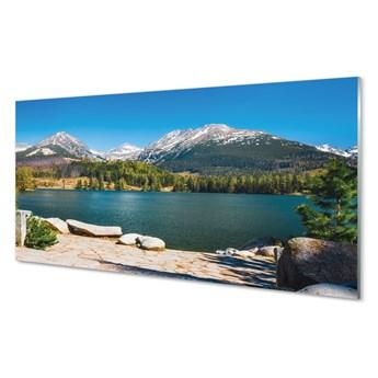 Obraz na szkle Góry jezioro