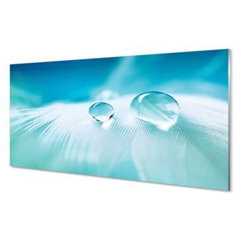 Obrazy na szkle Krople woda makro