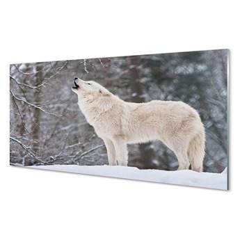 Obraz na szkle Wilk las zima