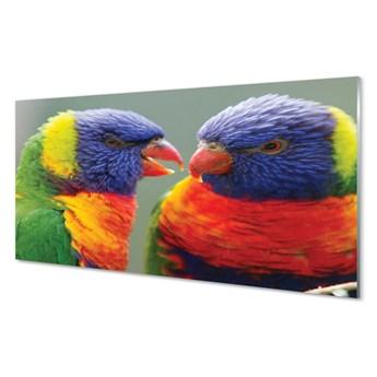 Obraz na szkle Kolorowe papugi