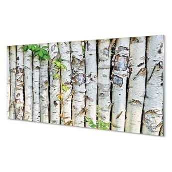 Obraz na szkle Brzozy liście