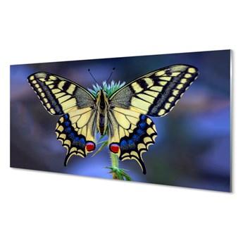 Obraz na szkle Motyl na kwiatku