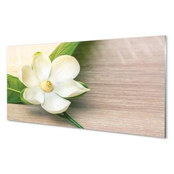 Obraz na szkle Biała magnolia