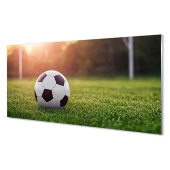 Szklany Panel Piłka trawa bramka