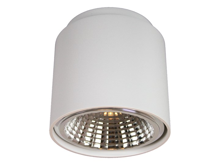 Varmant oprawa Tori biały mat 02212-01 Oprawa led Oprawa stropowa Okrągłe Kategoria Oprawy oświetleniowe