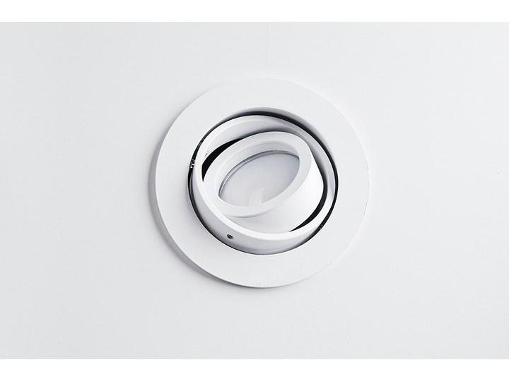 Lampa techniczna Carlo Oprawa wpuszczana Okrągłe Oprawa stropowa Kategoria Oprawy oświetleniowe Kolor Szary