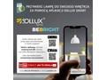 Sollux Lampa PLAFON ORBIS 1 NATURALNE DREWNO Oprawa Sufitowa Minimalistyczna LED Okrągłe Kategoria Oprawy oświetleniowe Oprawa halogenowa Oprawa led Oprawa stropowa Kolor Beżowy