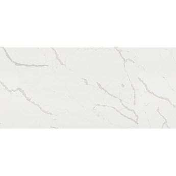 Wodoodporna płyta ścienna Statuario R101 PT