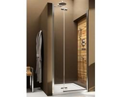 Drzwi prysznicowe Aquaform uchylne 120 cm - plytki-lazienki.pl