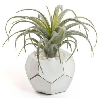 Sztuczna roślina Tillandsia z białą cementową doniczką 13 cm