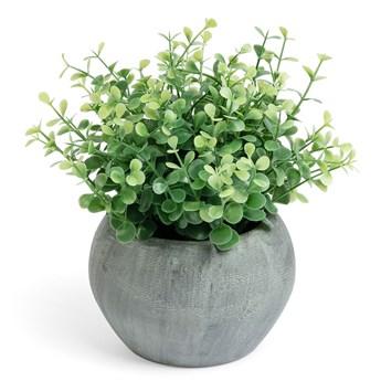 Sztuczna roślina Eucalipto z szarą doniczką 19 cm