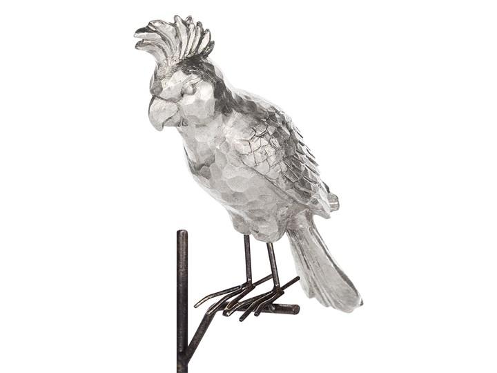 Figurka dekoracyjna srebrna z czarnym w kształcie papugi z podstawką 50 cm nowoczesny wygląd Ptaki Kolor Srebrny Kategoria Figury i rzeźby