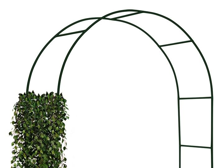 Pergola metalowa - łuk Wysokość 240 cm Stal Kategoria Pergole