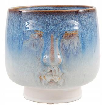 donica głowa niebieska