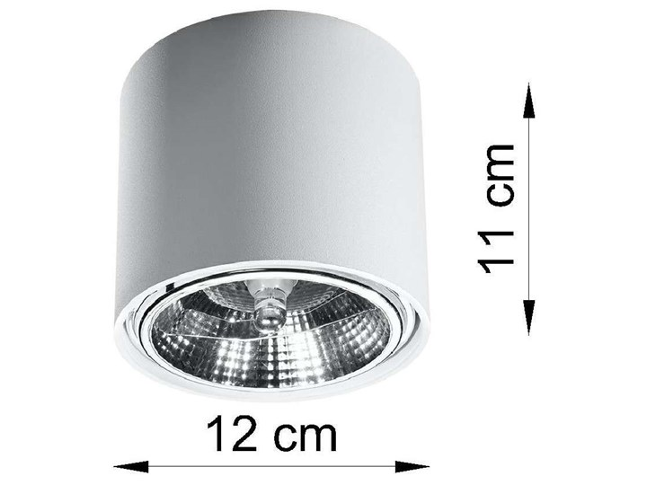 Spot LAMPA sufitowa SOL SL695 metalowa OPRAWA downlight natynkowa tuba biała