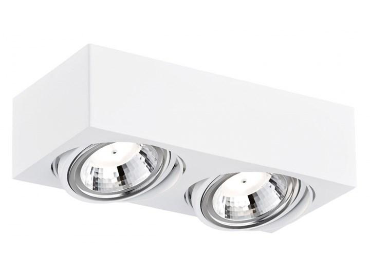 RODOS LED oprawa sufitowa natynkowa 2 x 5W LED ARGON 649 Oprawa stropowa Oprawa led Kategoria Oprawy oświetleniowe