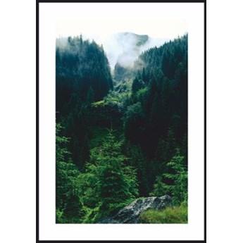 Plakat tajemniczy las w Karpatach