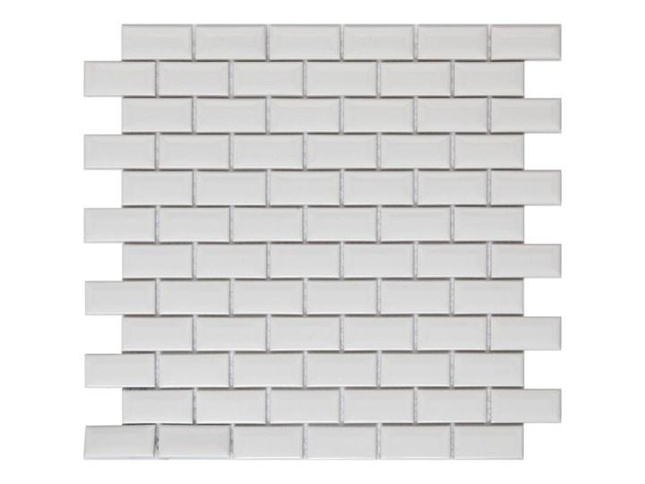 Mozaika Trentie GoodHome 30 x 30 cm white 30x30 cm Płytki ścienne Kolor Biały