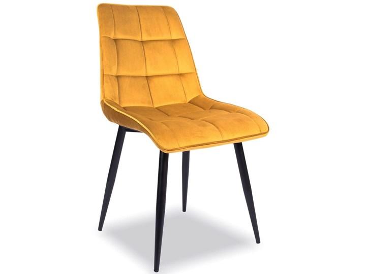 Krzesło CHIC VELVET Curry Signal Tkanina Stal Welur Wysokość 88 cm Pikowane Pomieszczenie Salon Szerokość 50 cm Głębokość 58 cm Metal Tapicerowane Z podłokietnikiem Kategoria Krzesła kuchenne