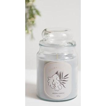 Sinsay - Świeca zapachowa Ginger&Sea Salt - Jasny szary
