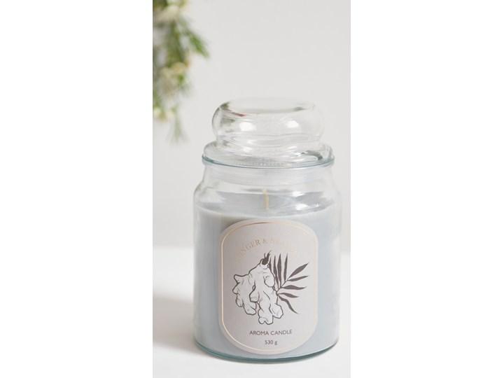 Sinsay - Świeca zapachowa w szkle Ginger&Sea Salt 530 g - Jasny szary