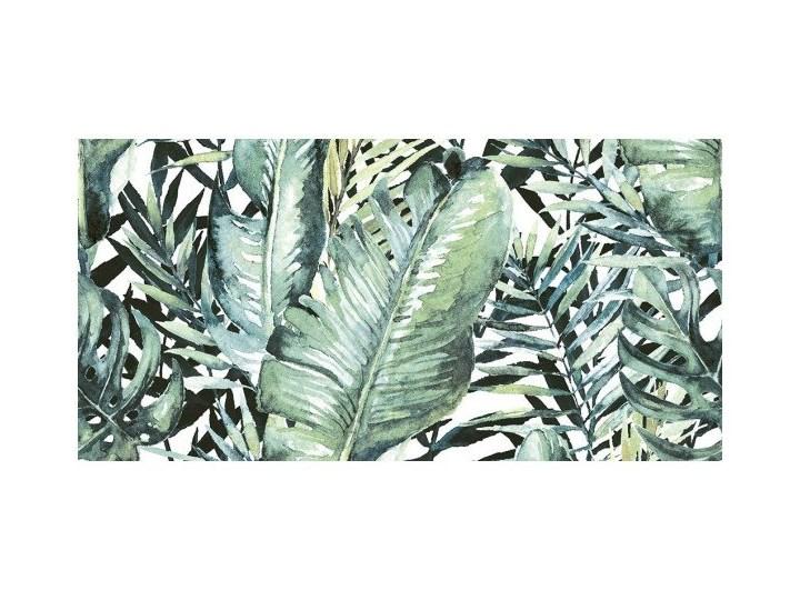 Dekor Nature Jungle Ceramstic 30 x 60 cm Płytki ścienne Płytka dekoracyjna Płytki łazienkowe 30x60 cm Kafle Płytki kuchenne Prostokąt Powierzchnia Polerowana