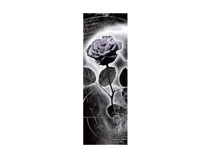Róża życia Plakat Plakaty Zdjęcia Pomysły Inspiracje