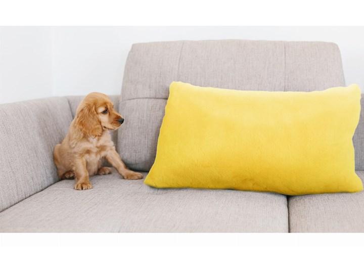 E-floor Poduszka Podłóżna Tedi Żółta Kolor Pomarańczowy Prostokątne Poduszka dekoracyjna Pomieszczenie Salon